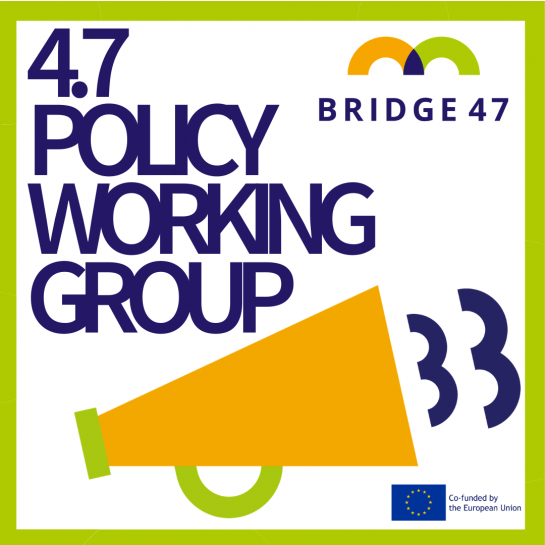 4.7 policy working group