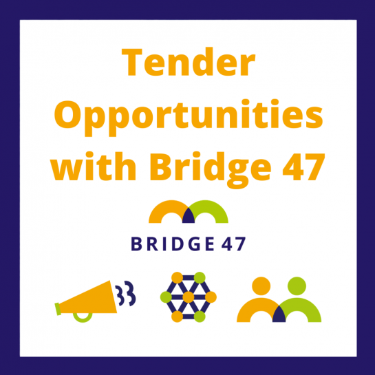 White background with purple border. Title text 'Tender Opportunities with Bridge 47' in orange. Bridge 47 icons featured below.