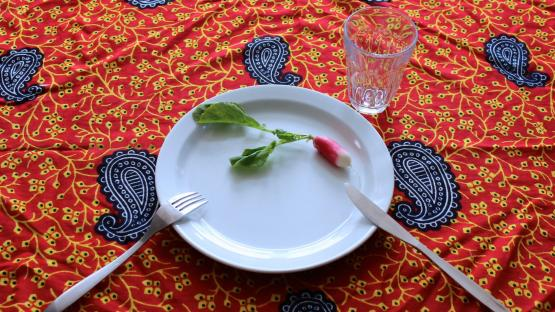 Photo of plate with one radish